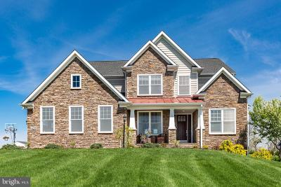 Carroll County Single Family Home For Sale: 428 Irish Rebel Road