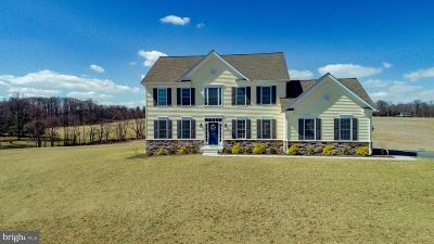 New Windsor Single Family Home For Sale: 2993 Lovell Drive