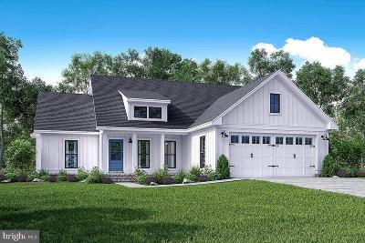 Hampstead Single Family Home For Sale: 207 Houcksville Road