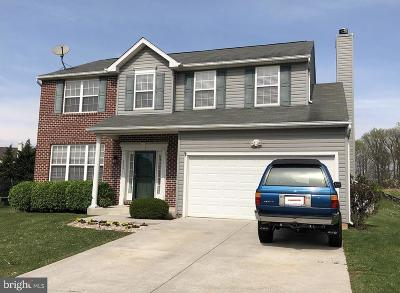 Single Family Home For Sale: 516 Kenan Street
