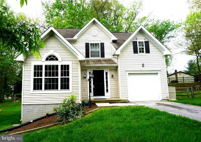 Carroll County Single Family Home For Sale: 617 Shimmering Run Court