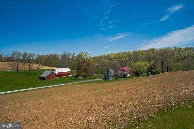 Manchester Single Family Home For Sale: 5111 Roller Road