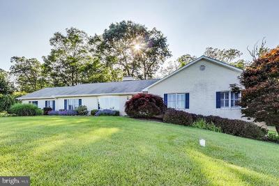 Westminster Single Family Home For Sale: 4104 Sequoia Drive