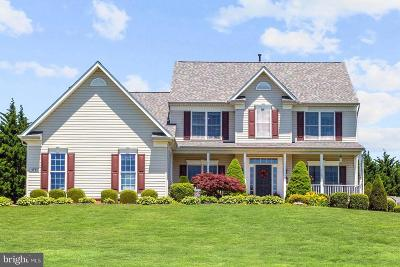 Carroll County Single Family Home For Sale: 3730 Secret Fence Drive