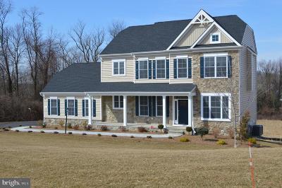 Carroll County Single Family Home For Sale: 906 Sand Rock Lane