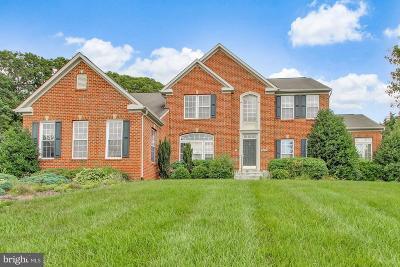Carroll County Single Family Home For Sale: 2251 Comanche Drive