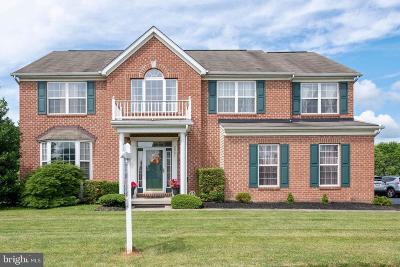 Manchester Single Family Home For Sale: 2991 Kipling Drive