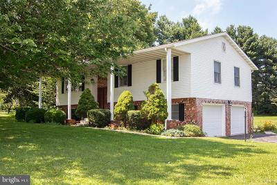 Carroll County Single Family Home For Sale: 400 Dove Lane