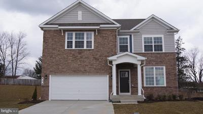 Carroll County Single Family Home For Sale: 724 Scarlet Sky Drive
