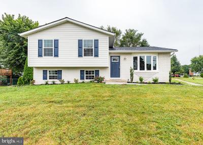 Carroll County Single Family Home For Sale: 698 Windsor Drive