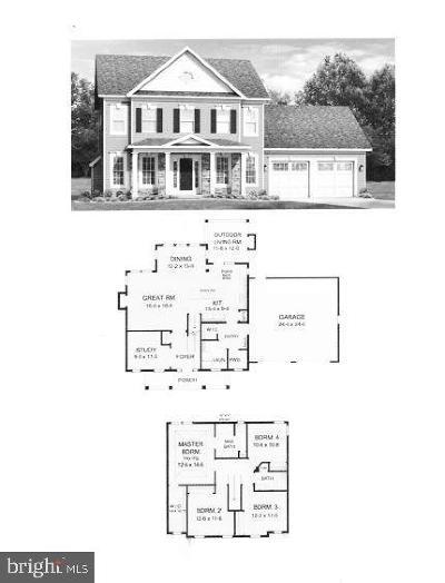 Carroll County Single Family Home For Sale: Houcksville Rd