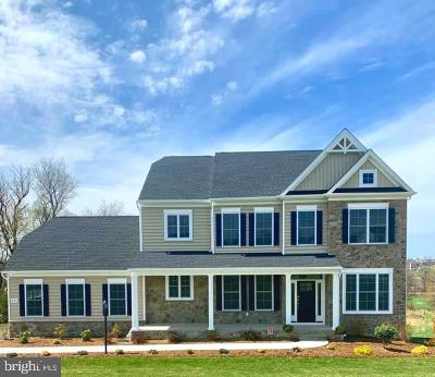 Single Family Home For Sale: 569 Lemmon Road