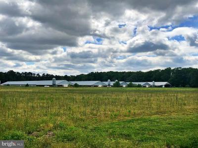 Dorchester County Farm For Sale: 5517 Hawkeye Road