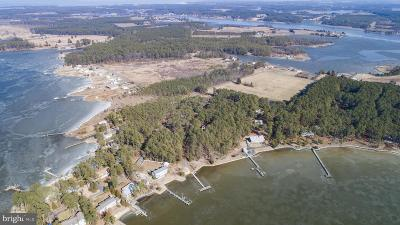Dorchester County Single Family Home For Sale: 5448 Casson Neck Road