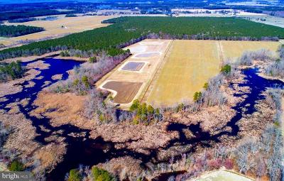Dorchester County Residential Lots & Land For Sale: Taylors Island Road