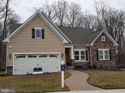 Cambridge Single Family Home For Sale: 408 S Regulator Drive S