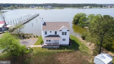 Dorchester County Single Family Home For Sale: 1228 Old Madison Road