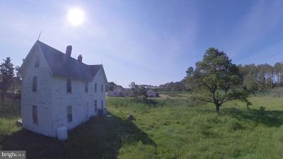 Dorchester County Single Family Home For Sale: 2152 Wingate Bishops Head Road