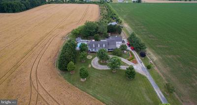 Dorchester County Farm For Sale: 6652 East New Market-Ellwood Road