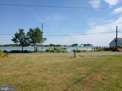 Dorchester County Single Family Home For Sale: 1240 Horse Point Road