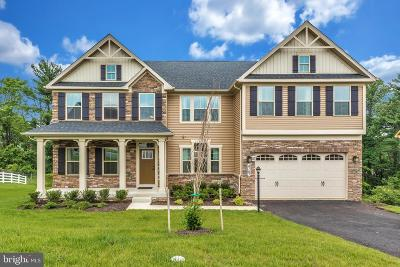 Frederick County Single Family Home For Sale: 4767 De Invierno Place