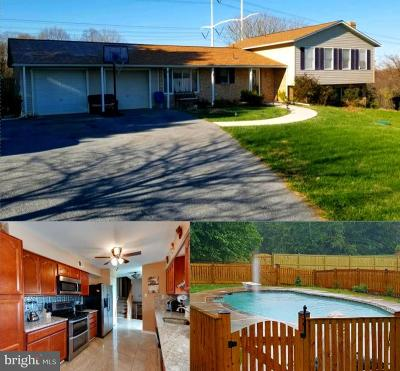 Mount Airy Single Family Home For Sale: 4240 Rolling Knolls Court