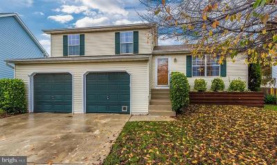 Frederick Single Family Home For Sale: 207 Bishops Glen Drive