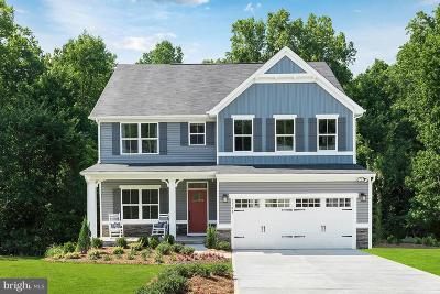 Frederick County Single Family Home For Sale: 1201 Tide Lock Street