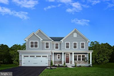 Frederick County Single Family Home For Sale: 501 Martins Creek Drive