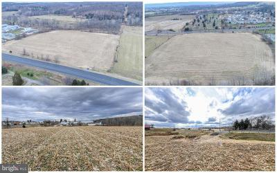 Commercial For Sale: Woodsboro Pike