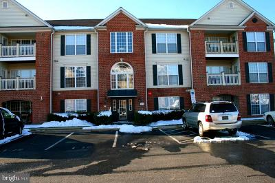 Fairfax County, Fairfax City, Loudoun County, Montgomery County, Prince George County, Prince William County, Frederick County, Fredericksburg City Condo For Sale: 589 Cawley Drive #2-1D