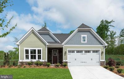 Frederick Single Family Home For Sale: 1401 Pedigree Street