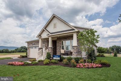 Frederick Single Family Home For Sale: 1100 Futurity Street