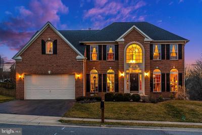 Frederick Single Family Home For Sale: 9313 Hillsborough Drive