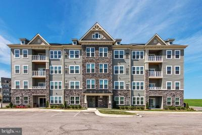 New Market Condo For Sale: 10280 Hopewell Street #P