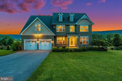 Frederick County Single Family Home For Sale: 16432 Sabillasville Road