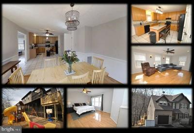 New Market Single Family Home For Sale: 6412 Lakeridge Drive