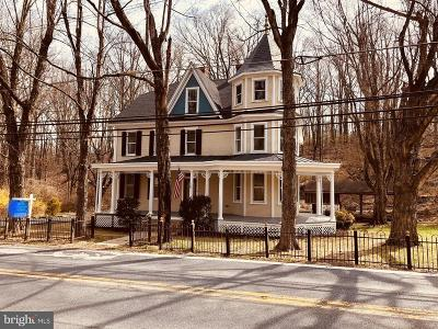 Thurmont Single Family Home For Sale: 480 W Main Street