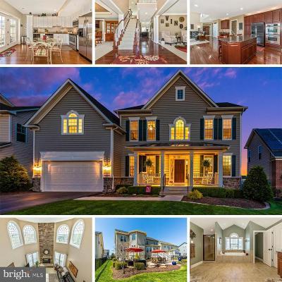 Single Family Home For Sale: 1316 Hope Farm Court