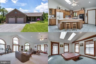 Myersville Single Family Home For Sale: 10908 Baltimore National Pike