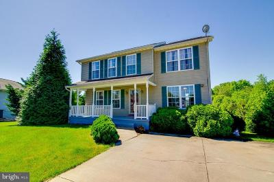 Emmitsburg Single Family Home For Sale: 2004 Academy Court