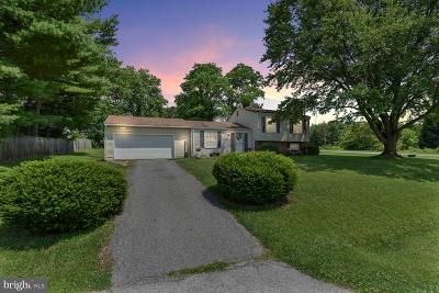 Middletown Single Family Home For Sale: 7101 Willow Tree Drive S