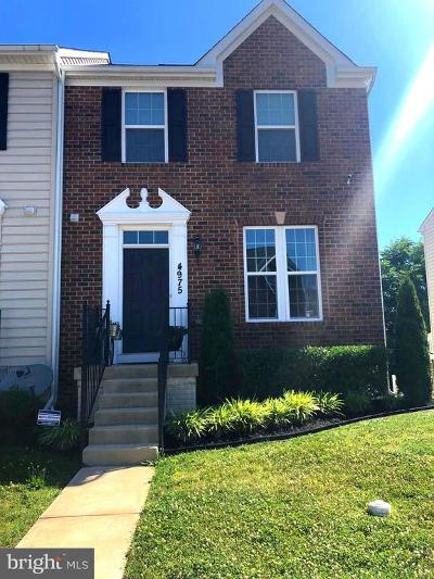 Frederick County Rental For Rent: 4975 Small Gains Way
