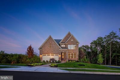 New Market Single Family Home For Sale: 38 Nightfire Terrace