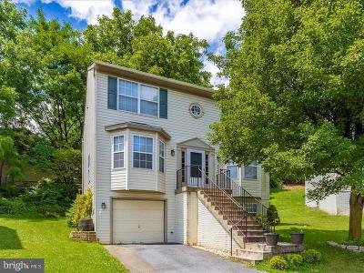 Frederick Single Family Home For Sale: 204 Shannonbrook Lane
