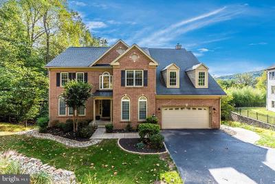 New Market Single Family Home For Sale: 9710 Woodfield Court