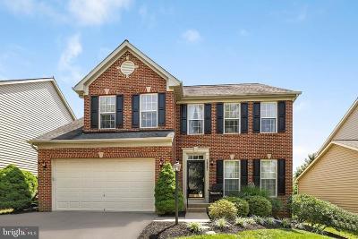 Frederick Single Family Home For Sale: 3965 Triton Street