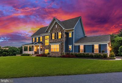 Clarksburg Single Family Home For Sale: 2133 Regina Terrace