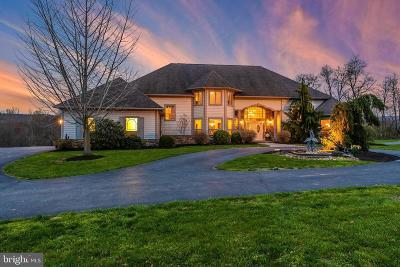Thurmont Single Family Home For Sale: 13180 Hessong Bridge Road
