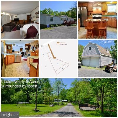 Swanton Single Family Home For Sale: 13160 Maryland